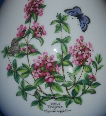 """Beautiful Royal Worcester 8"""" Worcester Herbs Vase Sage & Thyme Fab Condition"""