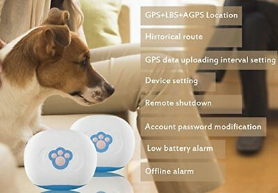 Futureway Mini GPS Pet Tracker for Dogs Cats - Hi-Spec,Free App, Real Time