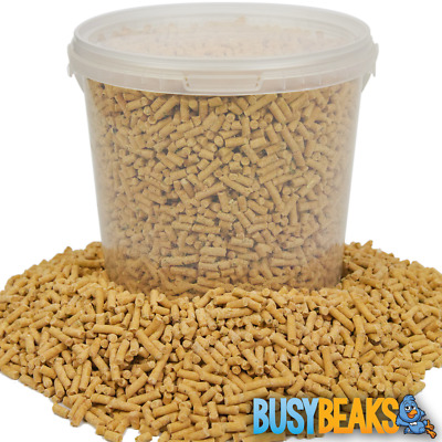 BusyBeaks Insect Suet Pellets - High Quality Feed Wild Garden Bird Food