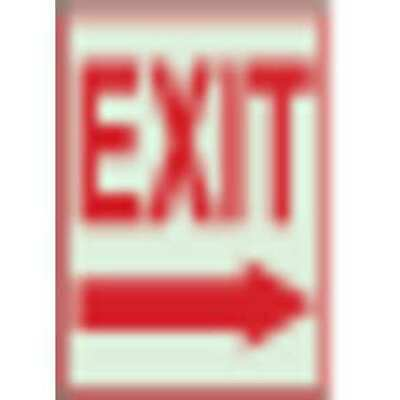 BRADY 22489 Exit Sign,7 x 10In,R//WHT,PLSTC,Exit,ENG