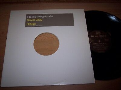 "NM 2001 David Gray Please Forgive Me / Orbital 12"" Single Sample LP Album"