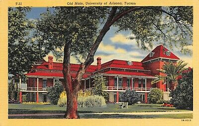 OLD MAIN BUILDING University of Arizona Scene Tucson,AZ Vtg 1940's Postcard