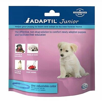Adaptil Junior One Adjustable Collar For Puppies Under 35 Lbs