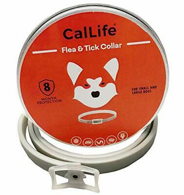 Flea and Tick Collar for Large Dog--8 Month Treatment & Prevention