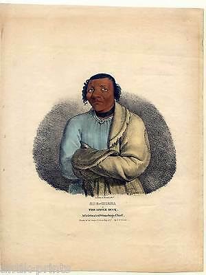 She-sheba - Little Duck-celebrated Winnebago Chief-Lithographie J. O. Lewis 1835