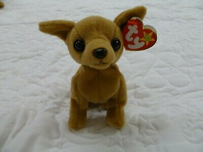 cf99834e70b TY BEANIE BABY Tiny Chihuahua 1998 1999 Retired Collection beanie ...