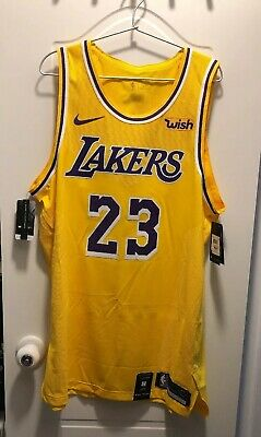 buy popular b2a0a cf28e LEBRON JAMES LA Lakers Nike Authentic Icon Home Jersey 40 S ...