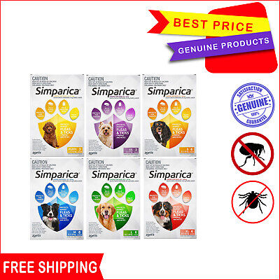 SIMPARICA Flea and Tick treatment 6 Chews for Dogs All Sizes by Zoetis