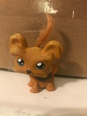 00f2e3bf13 Hasbro Littlest Pet Shop LPS Brown Yorkshire Terrier Yorkie  6 Real Hair