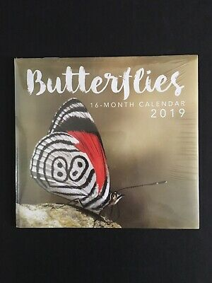 Printed Hard Cover Notebooks By Matador Planners & Organizers Business & Industrial butterflies