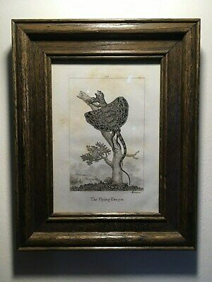 "1805 Framed Rare Antique Copperplate Engraving,""The Flying Dragon"", Amazing!!!!!"