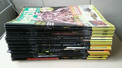 PRACTICAL REPTILE MAGAZINE - Joblot of Issues - SNAKES BEARDED DRAGON GECKO