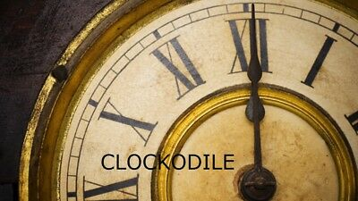 CLOCK REPAIR SERVICE ESTIMATE & CLOCKODILE CLOCK REPAIR TESTIMONIALS -since 1844