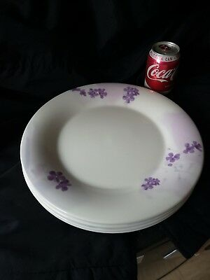 Portmerion Lilac Meadow serving or very large dinner plates 12inches across