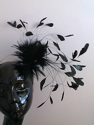 F2040 Feather Mount coque & hackle - for fascinators, hats trimming, & craft use