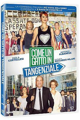 Come Un Gatto In Tangenziale (Like a Cat on a Highway) Italy DVD English subbed