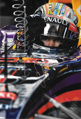 Sebastian Vettel SIGNED 12x8 ,Red Bull Helmet Portrait , 2014 Grand Prix Season
