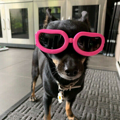 Dog Pet Sunglasses Eye Wear Protection Goggles Sun Puppy Cat Props for Chihuahua