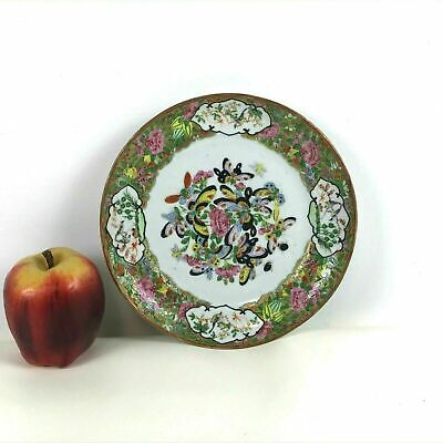 19th Century Rose Medallion Chinese Porcelain Plate Butterfly Decorated #214
