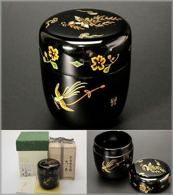 SGO16 Japanese wooden Gold Sumiyoshi makie Black lacquer Natsume tea caddy