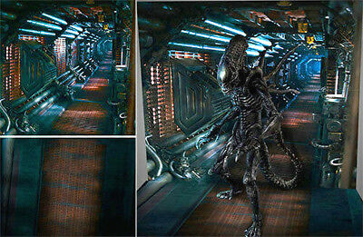 Poster Backdrop Ships Rolled~Alien~Nostromo For 1/6 Hot Toys Figure Mms354 Mms63