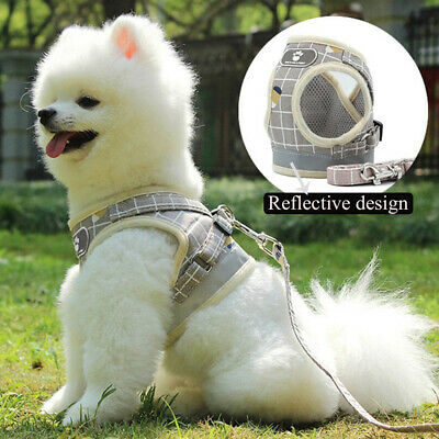 Puppy Vest Mesh Walk Leash Chest Strap Pet Traction Rope Dog Harness Collar