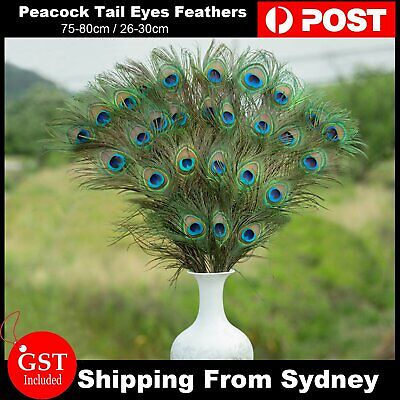 5-10pcs Natural Peacock Tail Eyes Feathers 75-80cm 26-30cm DIY Craft Vase Decor