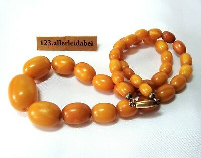 alte Butterscotch Bernstein Kette Top color Bernsteinkette real amber / BL 215
