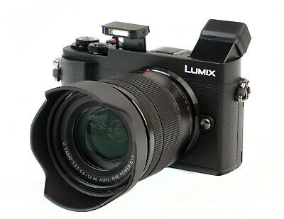 Panasonic LUMIX GX9 20.3 MP Mirrorless Camera w/ G Vario 12-60mm f/3.5-5.6 Lens
