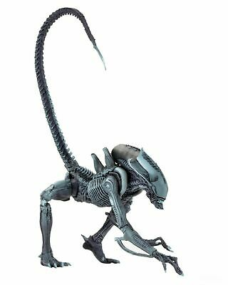 "Aliens vs Predator (Arcade) - 7"" Scale Action Figure - Arachnoid - NECA"