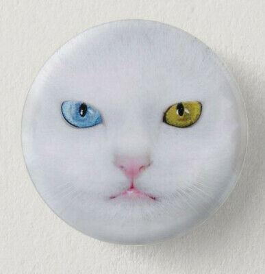 Pin Button Badge Ø38mm  CHAT #2