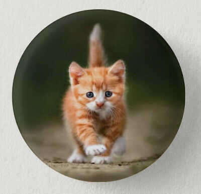 Pin Button Badge Ø38mm  CHAT #7