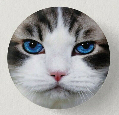 Pin Button Badge Ø38mm  CHAT #11