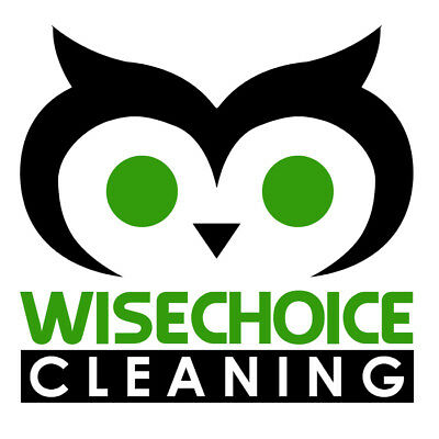 Wise Choice Cleaning Business name and full business set up .