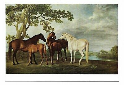 Wright Barker Horses Mares And Foals In A Rolling Countryside Print   #3656