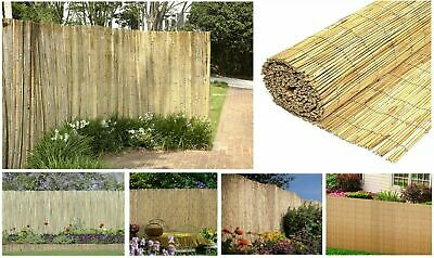 Natural Peeled Reed Fence Garden Privacy Screen Wall Fencing Panel Roll 4m Long
