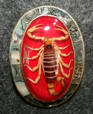 Vintage Scorpion Belt Buckle Mexico Silver Alpaca Abalone Seashell