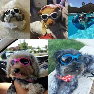 Dog Sunglasses Eye Wear UV Protection Goggles Pet Fashion Extra Small for Beagle