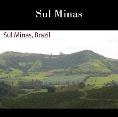 66 lbs BRAZIL SUL MINAS NATURAL PROCESS (AAA) GREEN COFFEE BEANS $29 SHIPPING