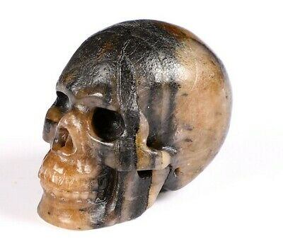 """FREESHIPPING 1.1"""" CHIASTOLITE Carved Crystal Skull, Realistic, Crystal Healing"""