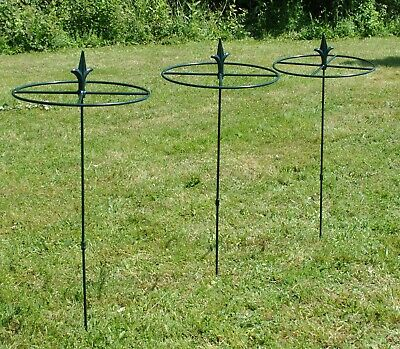Grow Through Circular Metal Plant Supports 80cm x 30cm (Set of 3)