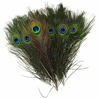"""100pcs x 10-12"""" Beautiful Peacock Tail Feathers Crafts DIY Party Wedding Costume"""