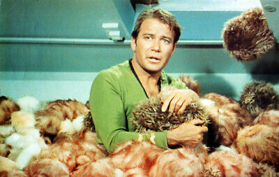 Star Trek Poster Page . Captain James T Kirk . The Trouble With Tribbles