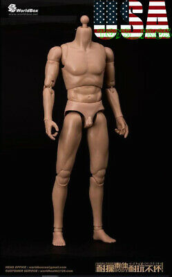WORLDBOX AT011 1/6 Narrow Shoulder Male Nude Body Figure SUPER DURABLE ❶USA❶