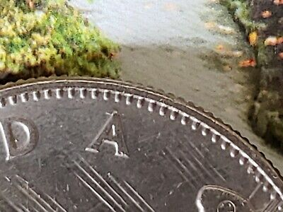 """1969 Canadian $1 One Dollar Coin MINT ERROR """"Die Crack"""" Through 2nd A in Canada"""