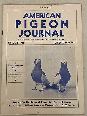 Doves & Pigeons, Birds, Animals, Collectibles Page 11 | PicClick