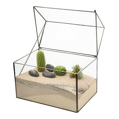 Glass Box Geometric Succulent Terrarium Tabletop Moss Plant Display Planter UK