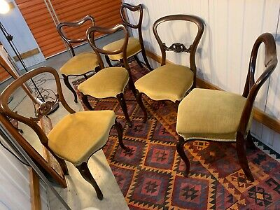 6 Beautiful Antique English Victorian Rosewood Balloon Kidney Back Dining Chairs