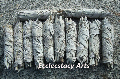 12 California White Sage Smudge Stick / Wands: House Negativity Removal 4 to 5 ""