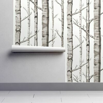 Removable Water-Activated Wallpaper Birch Grove Aspen Modern Tree Woodland